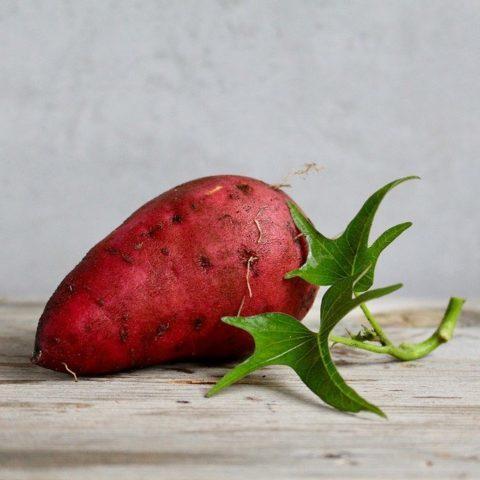 薪ストーブで焼き芋の作り方紹介!時間や温度・アルミホイルのあるなしについて